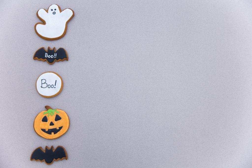 ghost, bat, Boo, jack o lantern, bat
