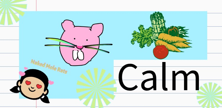A collage of images: a girl with heart eyes, a cartoon naked mole rat, a bunch of fresh vegetables and the word calm.