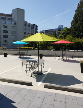 patio tables and chairs are set up on the Library's rooftop parking lot, decorated with flower planters and brightly coloured umbrellas